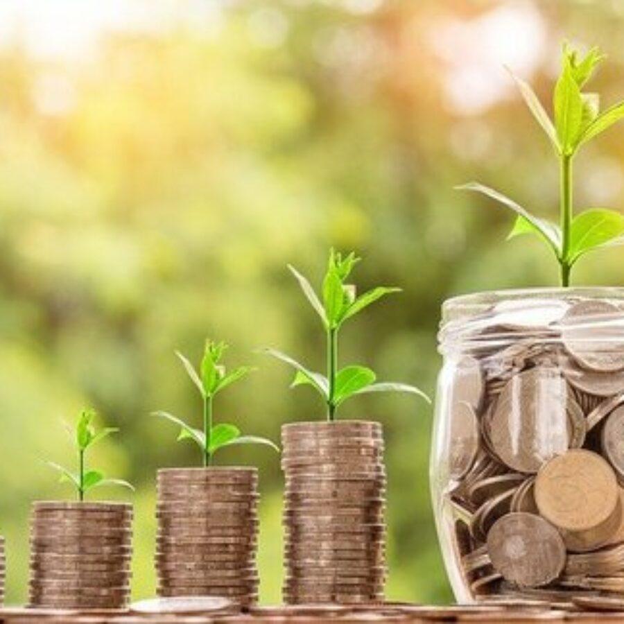 Jak si přitáhnout do života peníze?    Hojnost